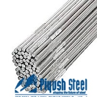 ASTM A276 Stainless Steel 904L Welding Rod